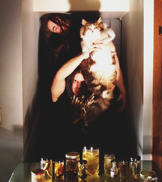 Heavy-Metal-Cats-Alexandra-Crockett-pixanews-3